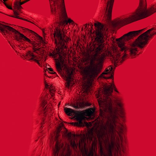 red stag 02